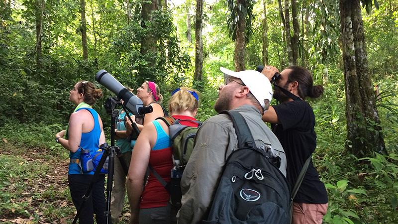 Costa Rica Eco Tours