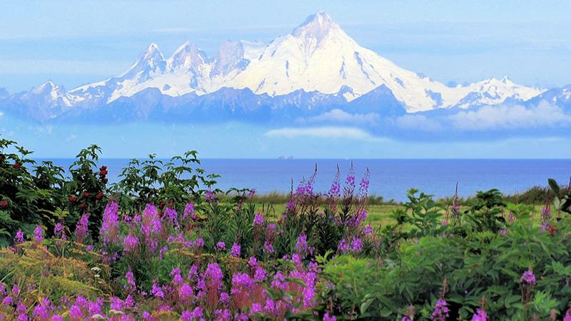 Women's Alaska's National Parks Hiking and Multi Sport Adventure
