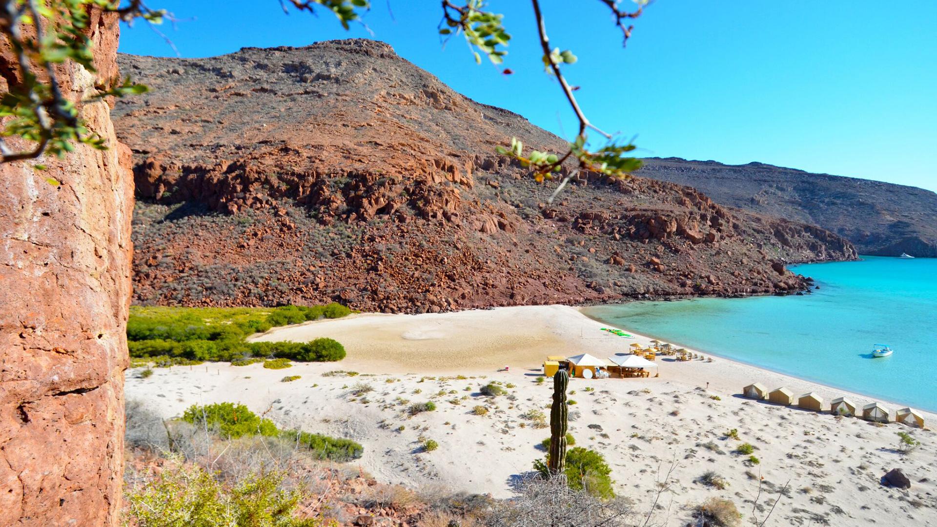 Baja Sur womens trips