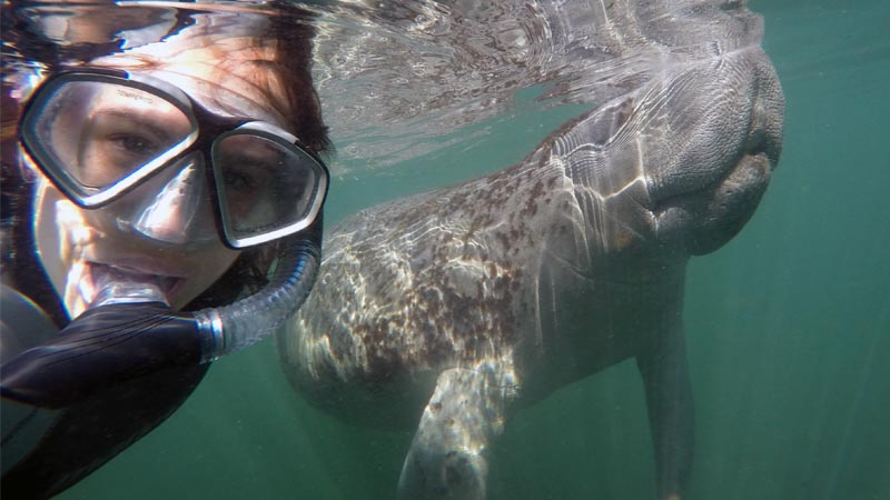 Florida Women's Adventure Manatee Snorkeling Tour- (March 26-31, 2021)