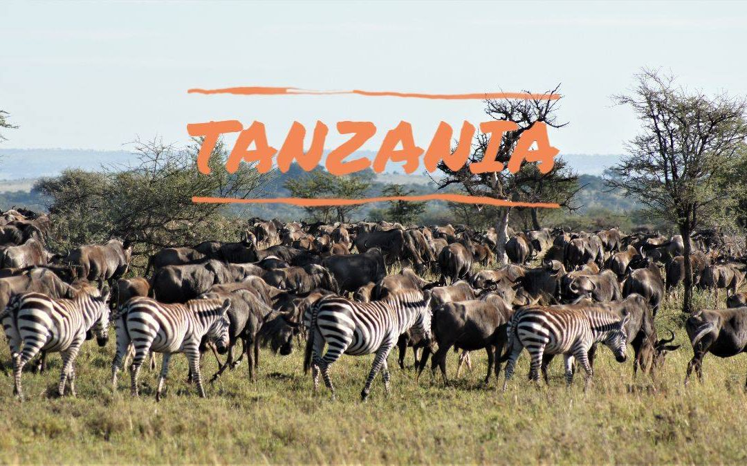 Women-Only Tanzania Safari Confirmed! Room for 3-4 more. | In partnership with Becoming an Outdoors Woman