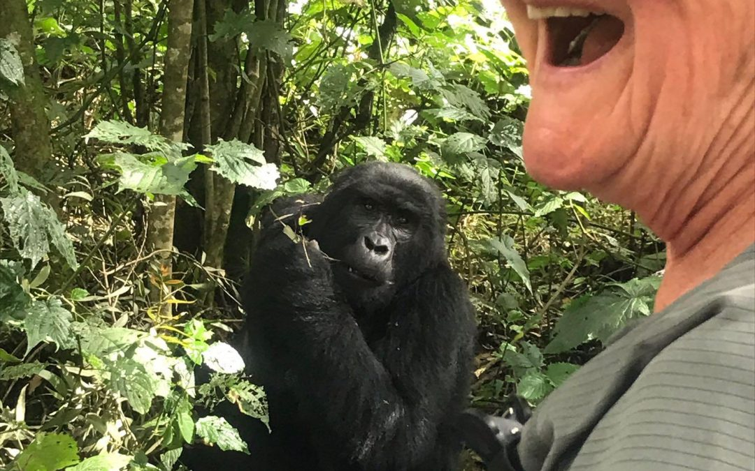 Women-only Mountain Gorillas Trekking | See the Pearl of Africa with Becoming an Outdoors Woman