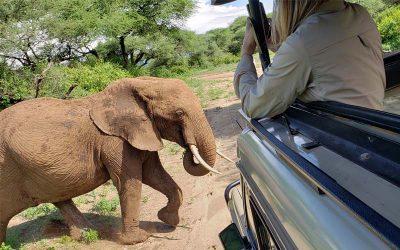 Women's Adventure and Safari to Tanzania