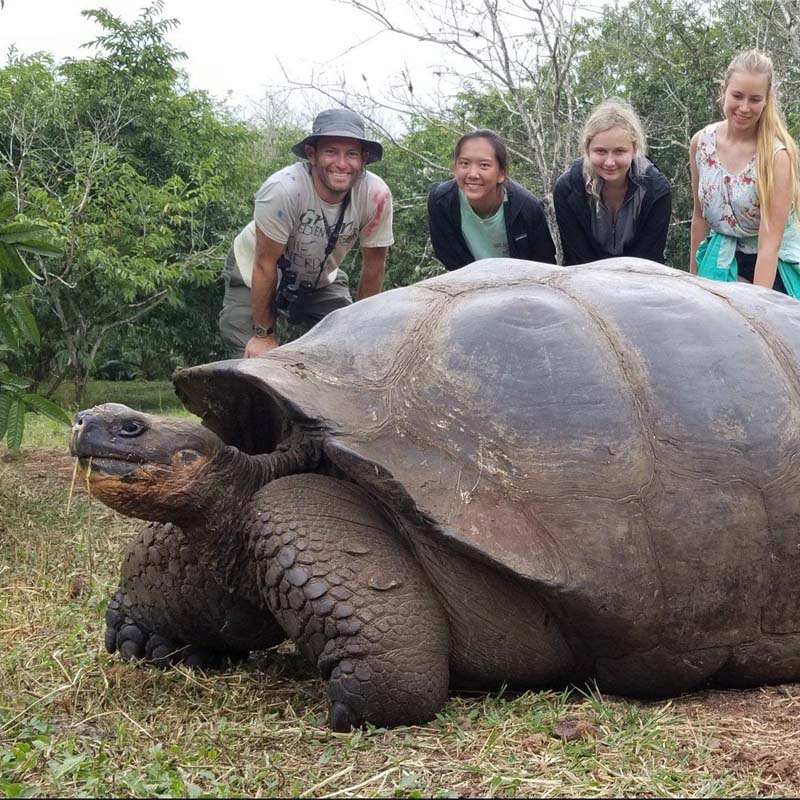 Eco Tour destinations - Homosassa and Crystal River Florida Manatees