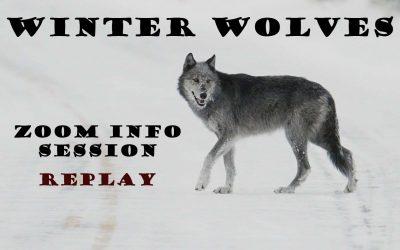 Winter Wolves & Wildlife Safari Informational Video Replay