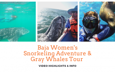 Green Edventures Baja Women's Snorkeling Adventure And Gray Whales Tour Videos