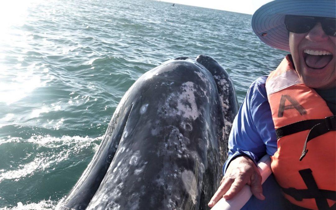 Women's Baja Snorkeling Adventure Plus Gray Whales Eco Tour – (March 11-18, 2022)